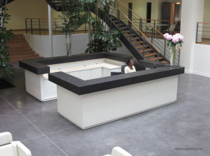Réalisation banque d'accueil laque blanche et béton