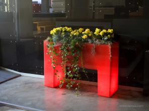 Jardinière lumineuse Muro Llum rouge